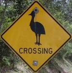 cassowary-crossing-sign