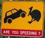 cassowary-road-sign-australia