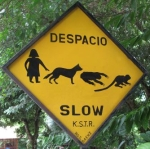 human-dog-sloth-monkey-crossing-costa-rica