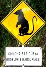 marsupialis-area-sign-columbia-america