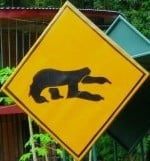sloth-crossing-sign-costa-rica