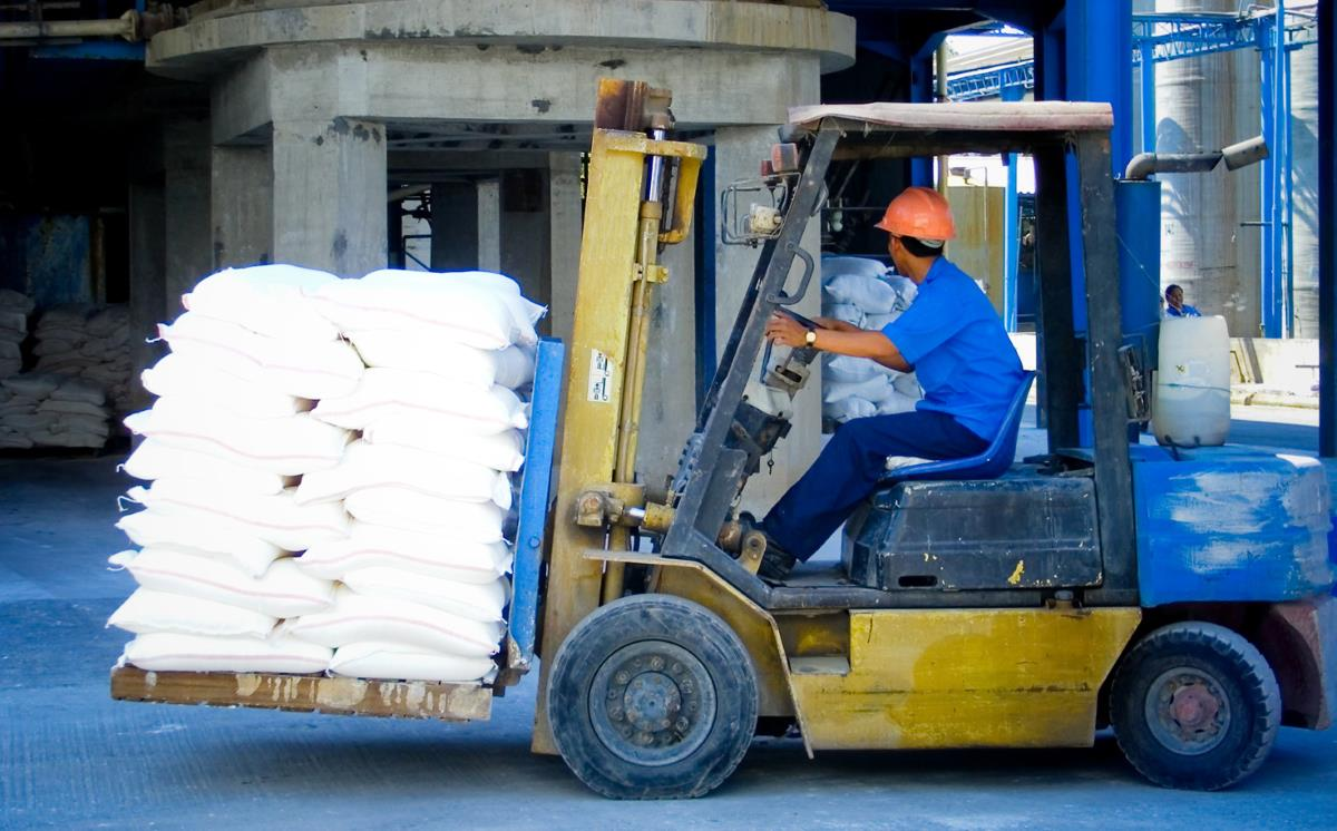 Forklift driver training theory xflitez Images